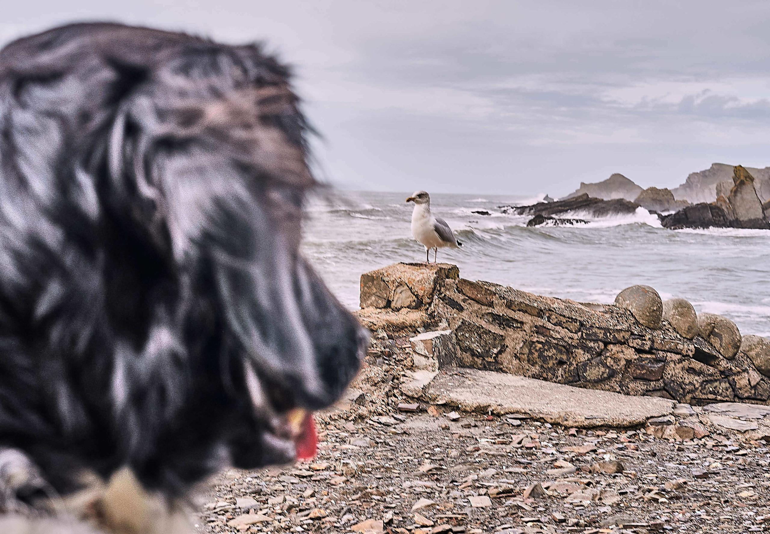 Cornwall_08