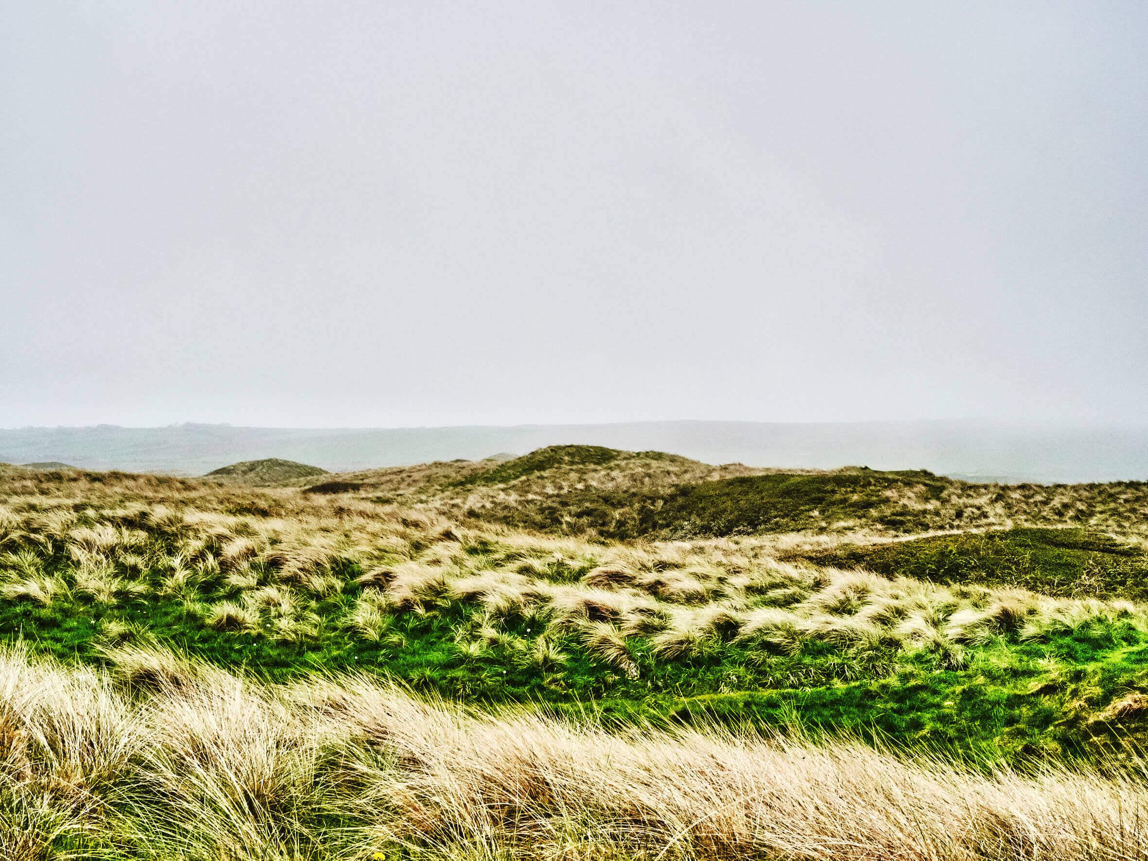 Wales_02