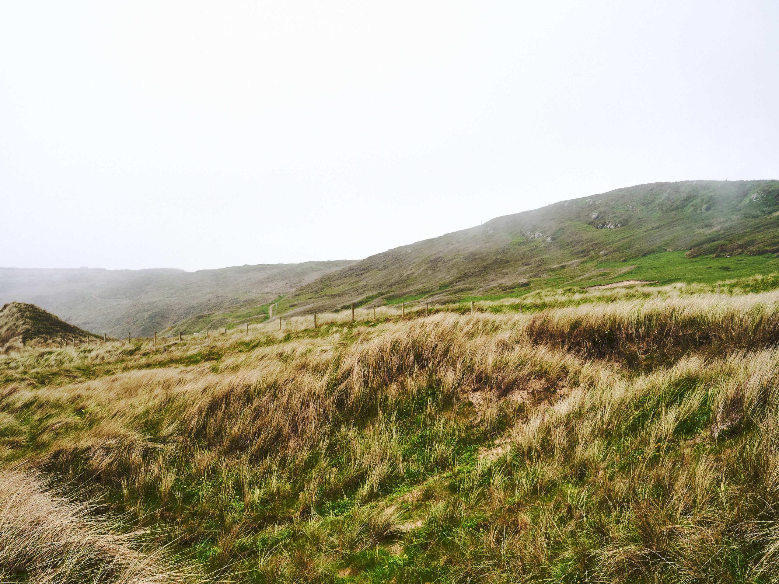 Wales_11