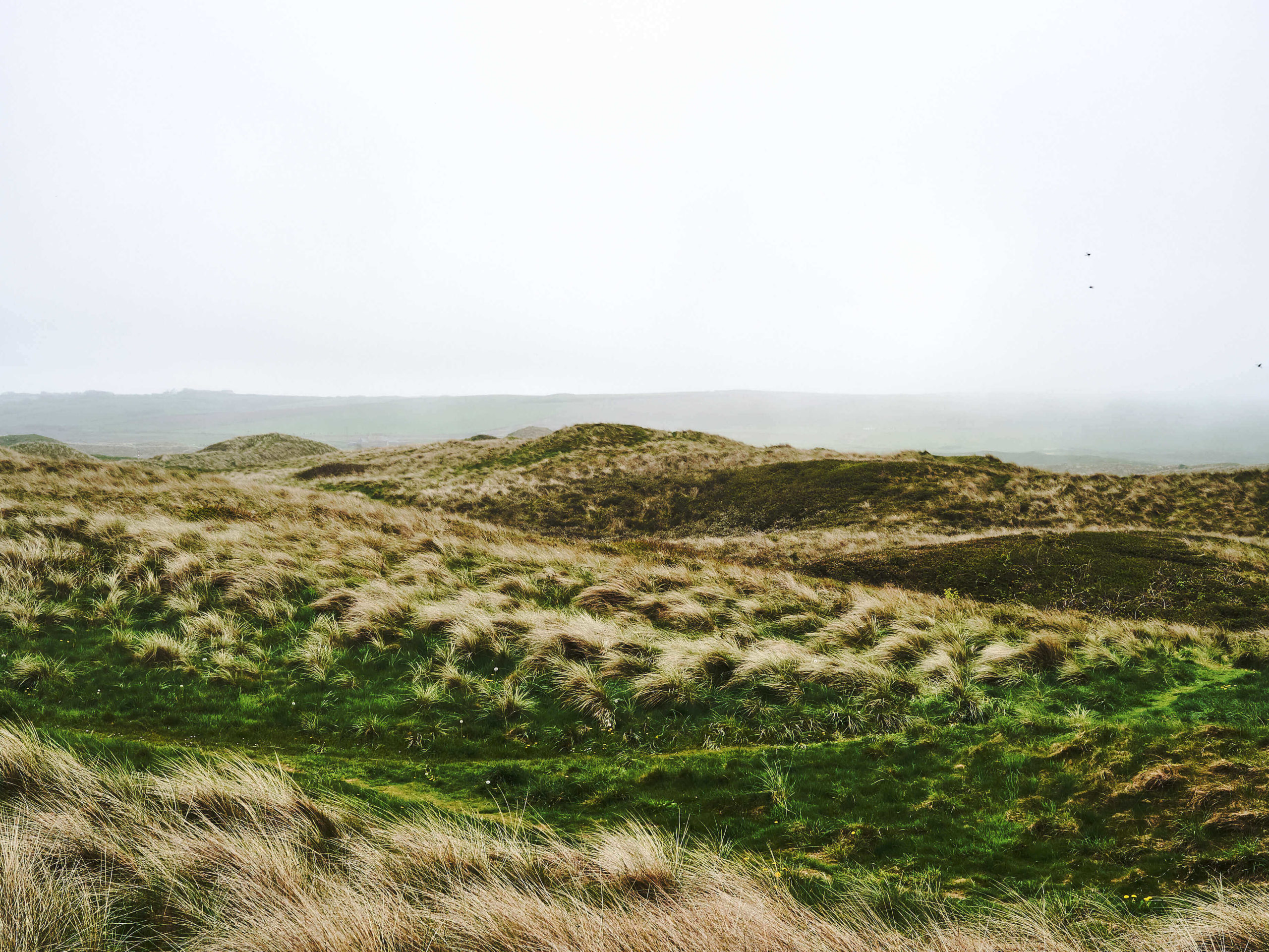 Wales_12